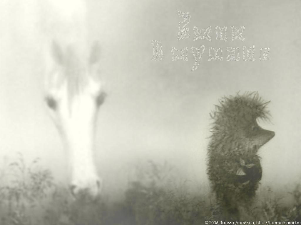 http://taema.narod.ru/wallpapers/Yogek/Yogek_1_1024x768.jpg